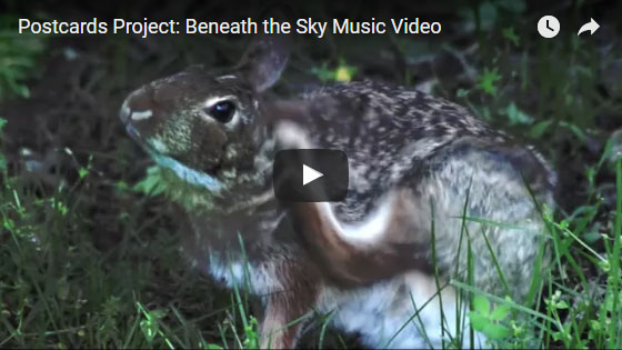 beneath the sky music video